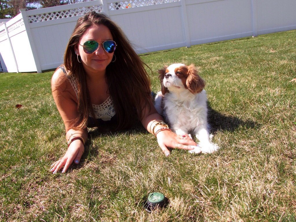 Boho Chic Mirrored Aviators Dress Outdoors Coachella Inspired MissyOnMadison Blog Blogger Tommy Hilfiger Sandals Gladiator Sandals Shop Puppy Dog King Charles Cavalier Puppy Love