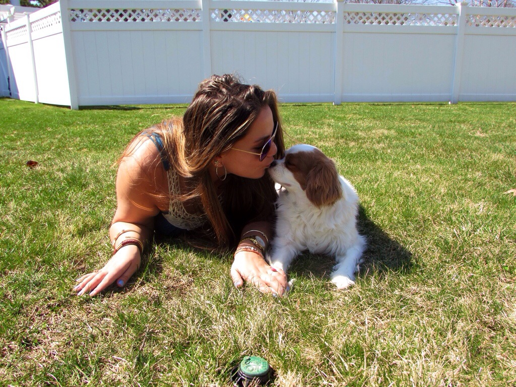 Boho Chic Mirrored Aviators Dress Outdoors Coachella Inspired MissyOnMadison Blog Blogger Tommy Hilfiger Sandals Gladiator Sandals Shop puppy dog king charles cavalier puppy love pets dogs love