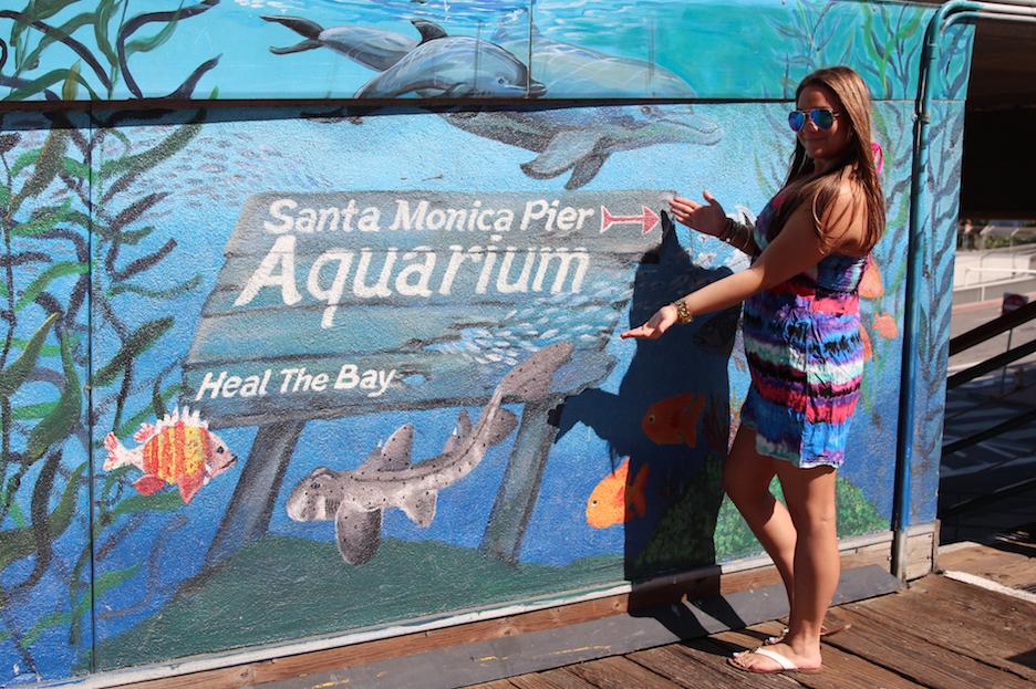 santamonicapier cali california missyonmadison fashion blog blogger fashionblog target oldnavy sunglasswarehouse mirroredaviators sunglasses aquarium fashionblog